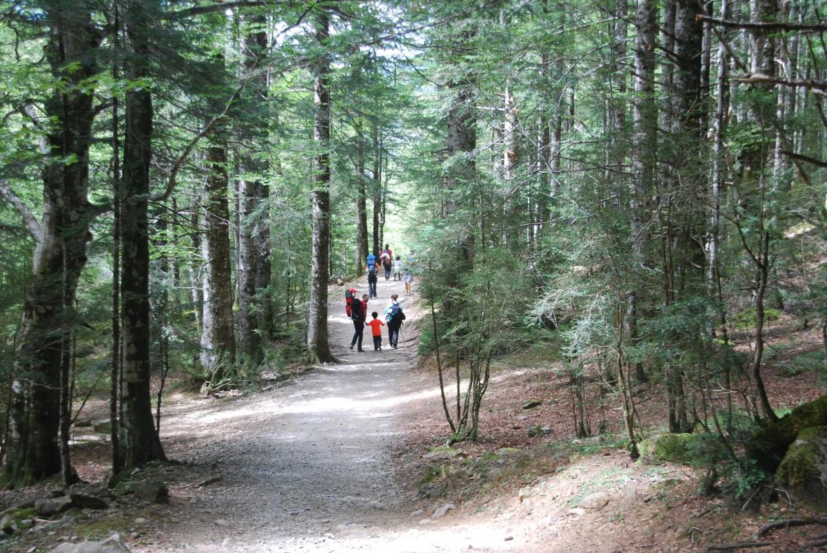 Valle de Ordesa, visita con niños.