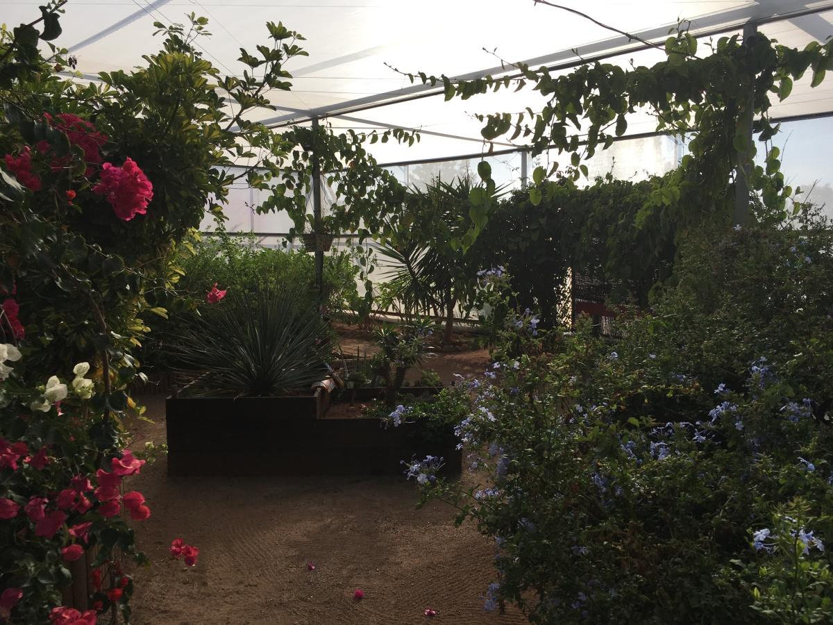 Mariposario de Nijar: un jardín lleno de vida