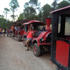 Tren del Parque de Fauna Silvestre Collado del Almendral