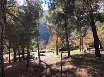 Zona de picnic fuera de las parcelas