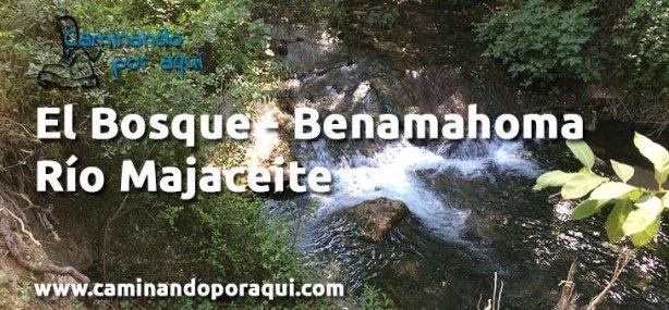 dest-el-bosque-benamahoma