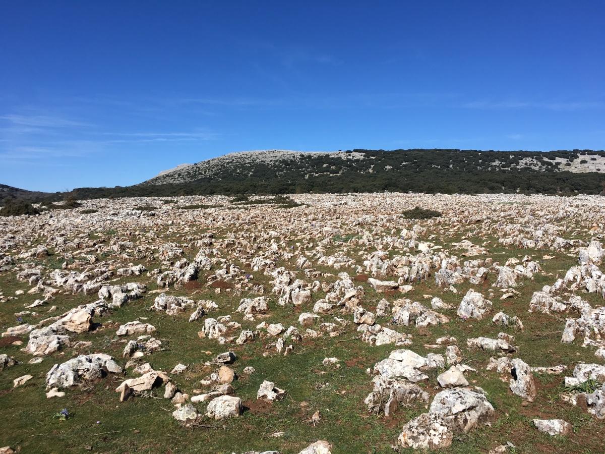 Sendero Río Bailón, descubre uno de los poljés más grandes de Andalucía