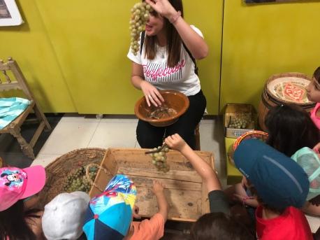 Demostración de como se prepara la uva para el embarque
